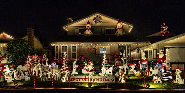 Downey Daily Photos December 2013