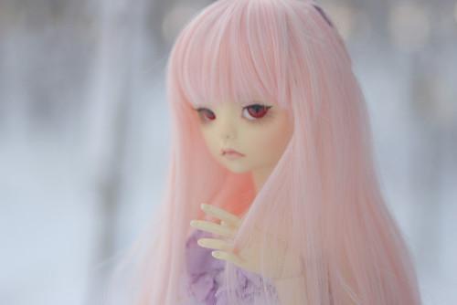 IMG_4579