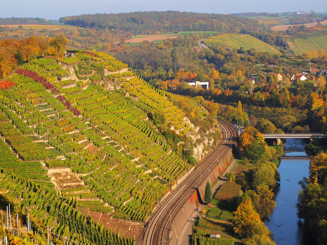 Vineyard Terraces above the Wine Route (Württemberger Weinstraße)