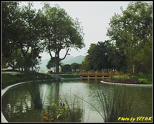 杭州 西湖 (其他景點) - 061 (湖濱路的湖畔花園)