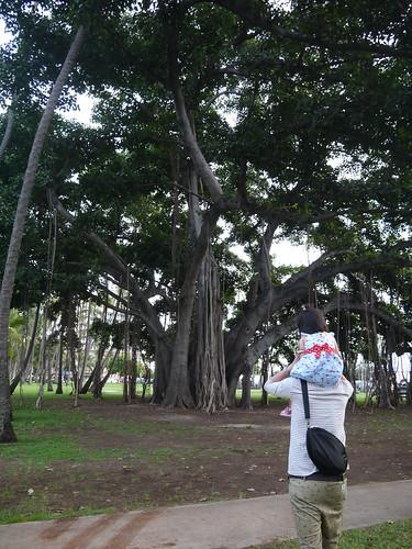 2014.hawaii.ami 054
