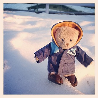 #tb365bear #teddybear walking in the snow