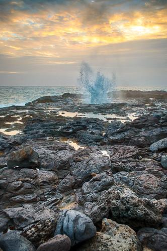 hawaii kauai spoutinghorn