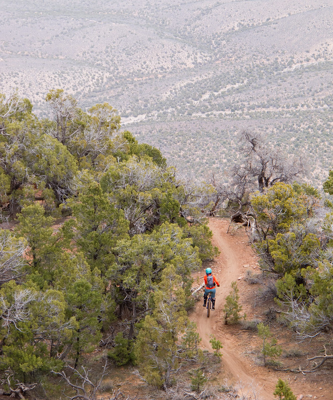 An'so on Lower Porcupine Singletrack