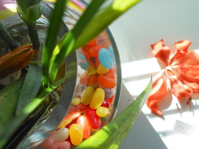 jellybean3
