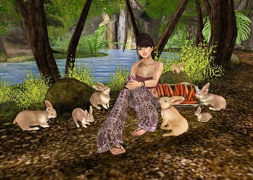 Bunnies R Us