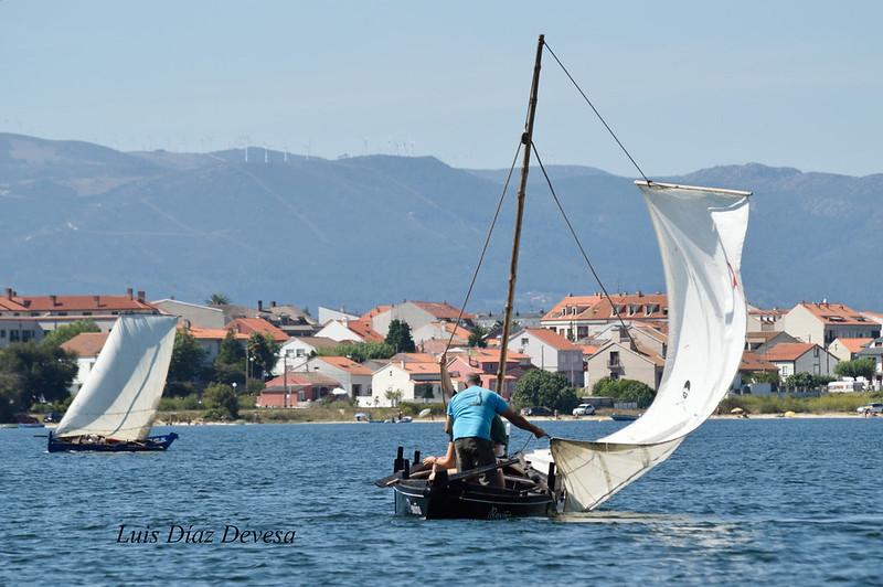 Regata de Dornas a Vela na Illa de Arousa