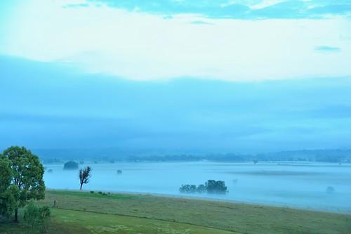 aus australia newsouthwales woodville nikond700 landscape foggy