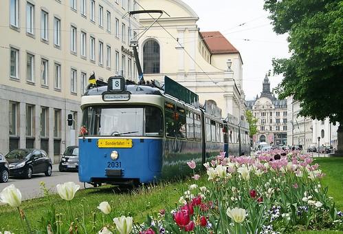 Die München-Tram mit bulligem P- statt M-Wagen, hier am Promenadeplatz