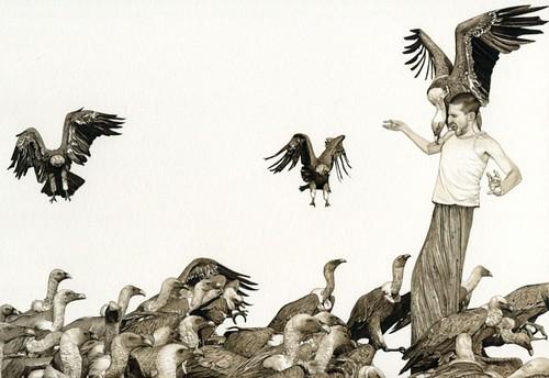 Fabien Merelle, Vautours (Vultures), 2013