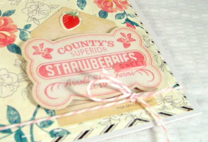 June2013_StrawberriesSneak