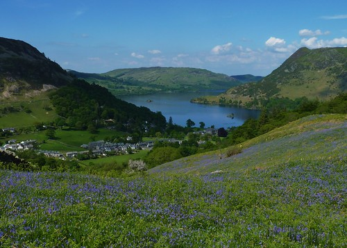 View over Ullswater with a field of blubells in the foreground, under a clear blue sky