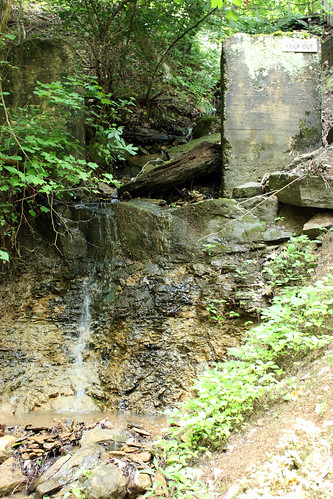 20130713_Cheat_Lake_Rail_Trail_020