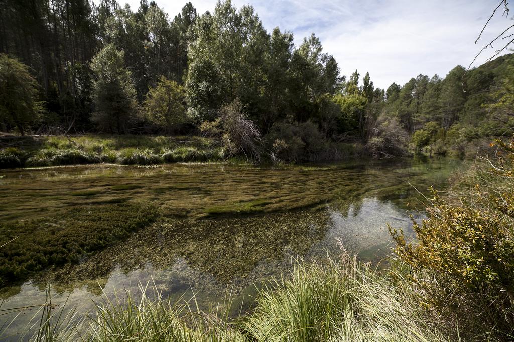 El río Tajo en Peralejos de las Truchas. Autor, El S@lmón
