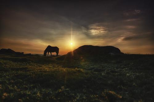 sunset sun nikon sigma sunsets pony devon tor dartmoor nikond7000 sigma816 darbians