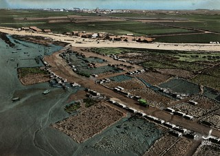 Le port de La Pelle