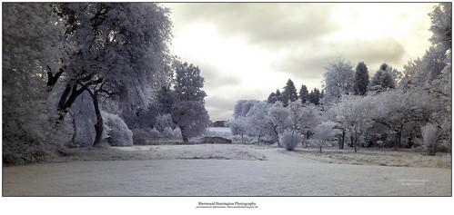 bridge ireland castle ir meadow infrared offaly birrcastledemesne