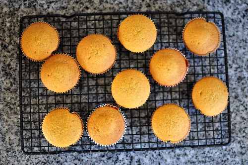 Spiced Pumpkin Cupcakes with Cream Cheese Frosting