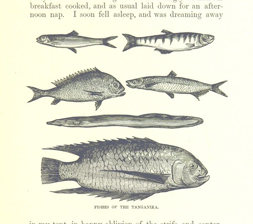 Image taken from page 179 of 'Great Explorers of Africa. With illustrations and map'