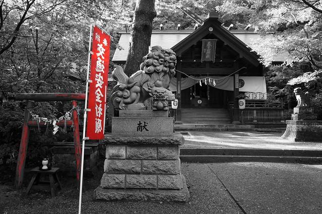 写真_春日山神社