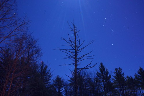 2013_1216Snag-In-The-Cold-Moonlight0001 by maineman152 (Lou)