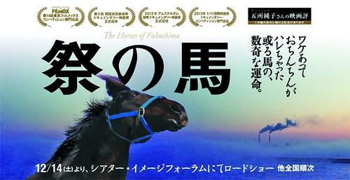 《祭馬》電影海報,圖片來源:綠盟