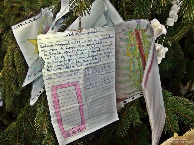 Nyíregyháza Christmas 2013 (1)