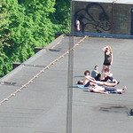 Rooftop sun bathers - loweswater house