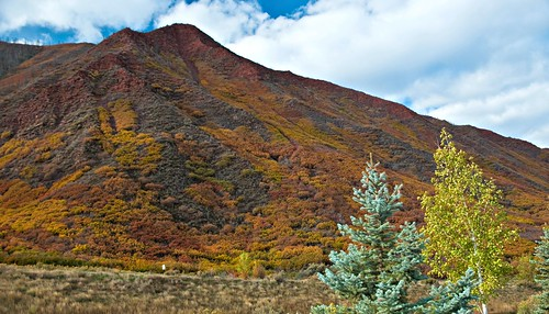 autumn mountain signs fall nature sign colorado neon foliage co rockymountains neonsign vintageneonsign glenwoodspringscolorado stormkingmountain pammorris pamspics nikond5000 avettbrothersroadtrip
