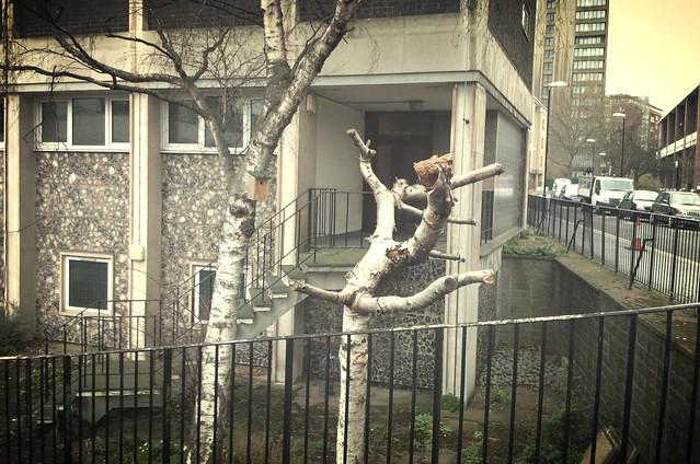 linnunpontto lontoossa