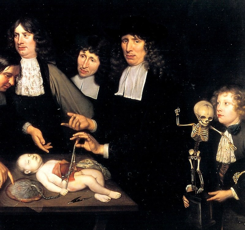 anatomy lesson ruysch