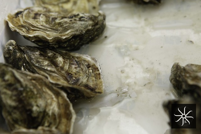 oysters southern rock seafood bangsar - shucked publika-016