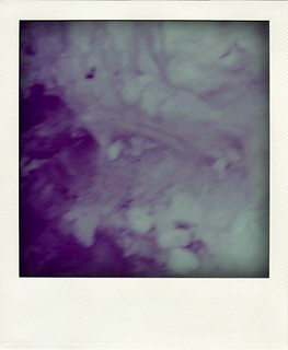 poladroid: the lovers