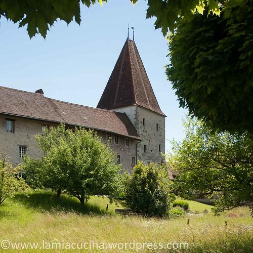 CH-4537 Wiedlisbach 2014 05 24_4108