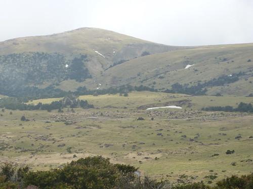 Co-Jejudo-Hallisan-Montée-Yeongsil (22)