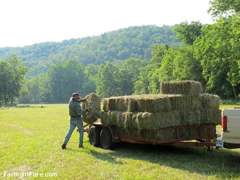 (31-15) The hardest part of haying is bringing in the bales - FarmgirlFare.com