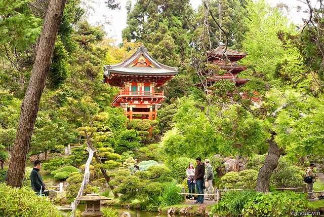 Japanese Tea Garden - San Francisco