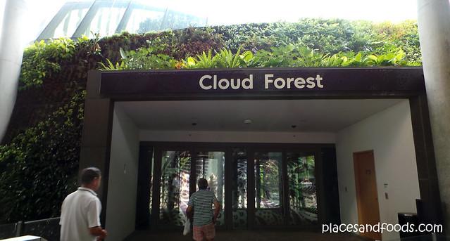 cloud forest entrance