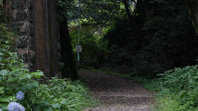 Nature_Road_03