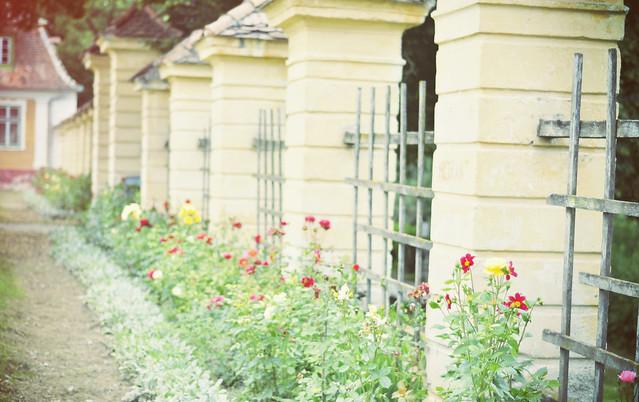 Brukenthal_Avrig_gardens (15)