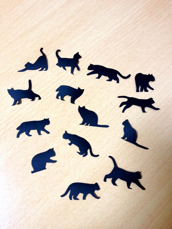 ネコがいっぱい1