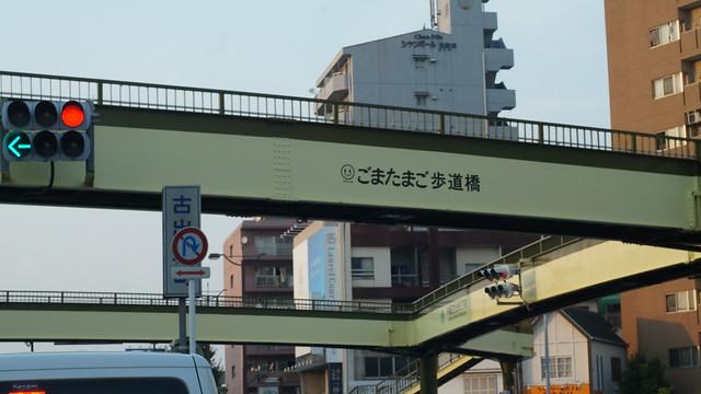 gomatamago