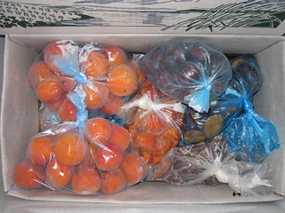 Freezing apricots fruits