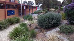 Fraser Primary School Garden