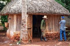hut, wood, shack, cob, rural area,