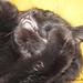 04292012-SleepinPretty