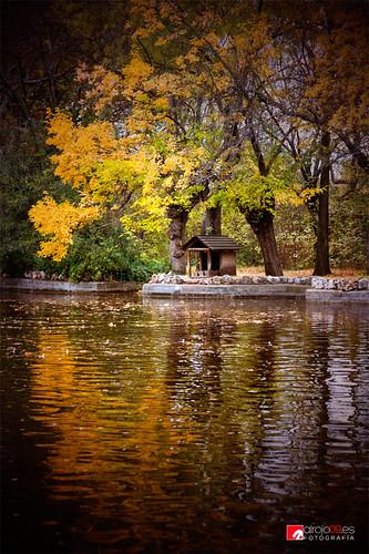 Otoño | Parque de El Capricho | Madrid by alrojo09