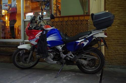 IMGP0503