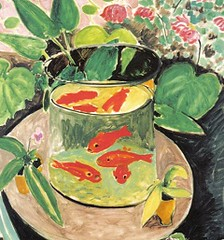 PS May 2013 Goldfish