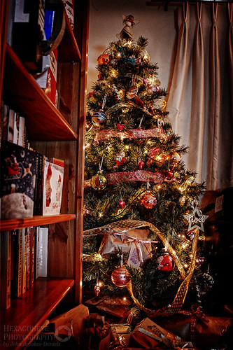 Christmas Tree 2013 by Hexagoneye Photography